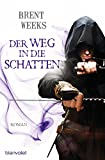Book Cover for Der Weg in die Schatten