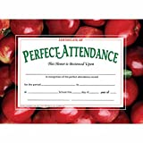 Certificate of Perfect Attendance - Glossy Paper - Quantity 150