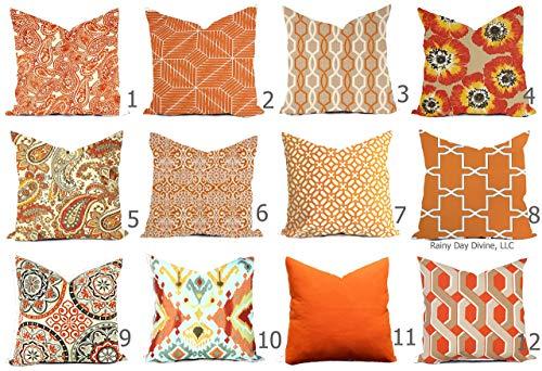 Outdoor Pillow Cover Orange Tangerine Mango Pumpkin Fall ()