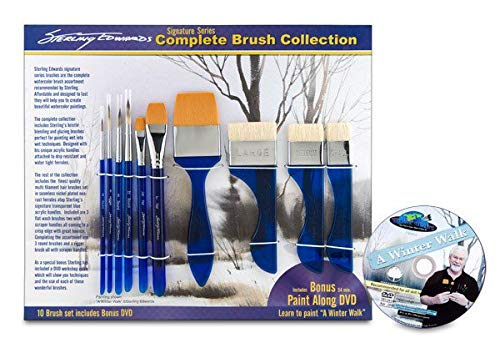 Sterling Edwards Signature Series Brush Set with DVD ()