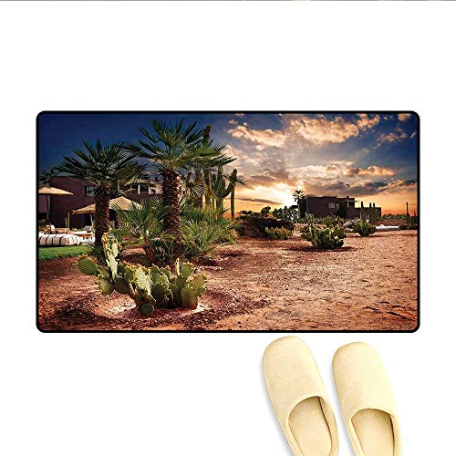 Doormat Majestic Sky View Palm Trees and Cactus in Oasis Morocco Tropic Nature Bath Mat for Tub Bathroom Mat Blue Green Light Brown 16
