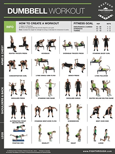 Dumbbell Exercises Laminated Poster Chart - Strength Training - Core - Chest - Legs - Shoulders & Back - Build Muscle, Tone Tighten - 18