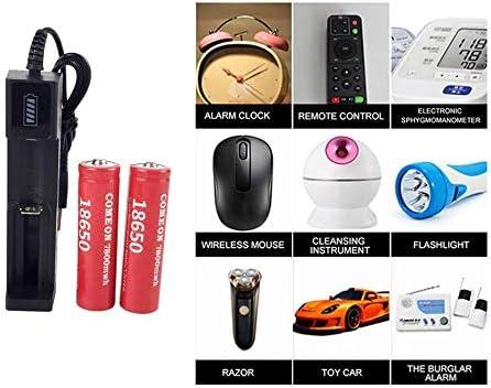 FYstar 18650 Batteries Rechargeable au Lithium Batterie au Lithium 7800mwh 3.7V Grande capacit/é Li-ION ICR Batterie pour Lampe de Poche LED Torche avec Chargeur USB