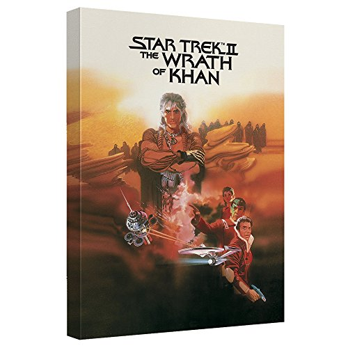 The Wrath of Khan–-スタートレック–- STRETCHED CANVAS FRAMED artwrap 20x30 Inches TR-CBS1853-ADV2-20x30の商品画像