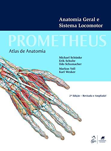 Atlas de anatomia - 3 Volumes