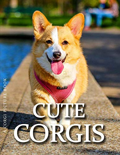 Corgi Picture Book - Cute Corgis (Dog Photography Book Series)