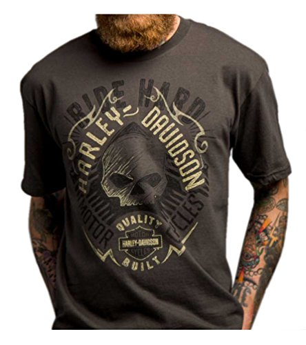 Harley-Davidson Men's Powerful Skull Wings Short Sleeve T-Shirt, Gray 5504-HC92