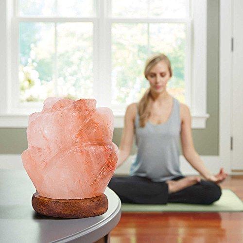 Niubity Himalayan Pink Natural Salt Lamp,USB Wooden Base Himalayan Crystal Rock Salt Lamp Air Purifier Night Light (Rose)