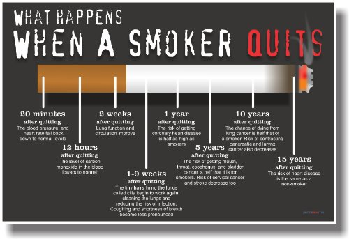 - What Happens When a Smoker Quits - NEW Health Poster