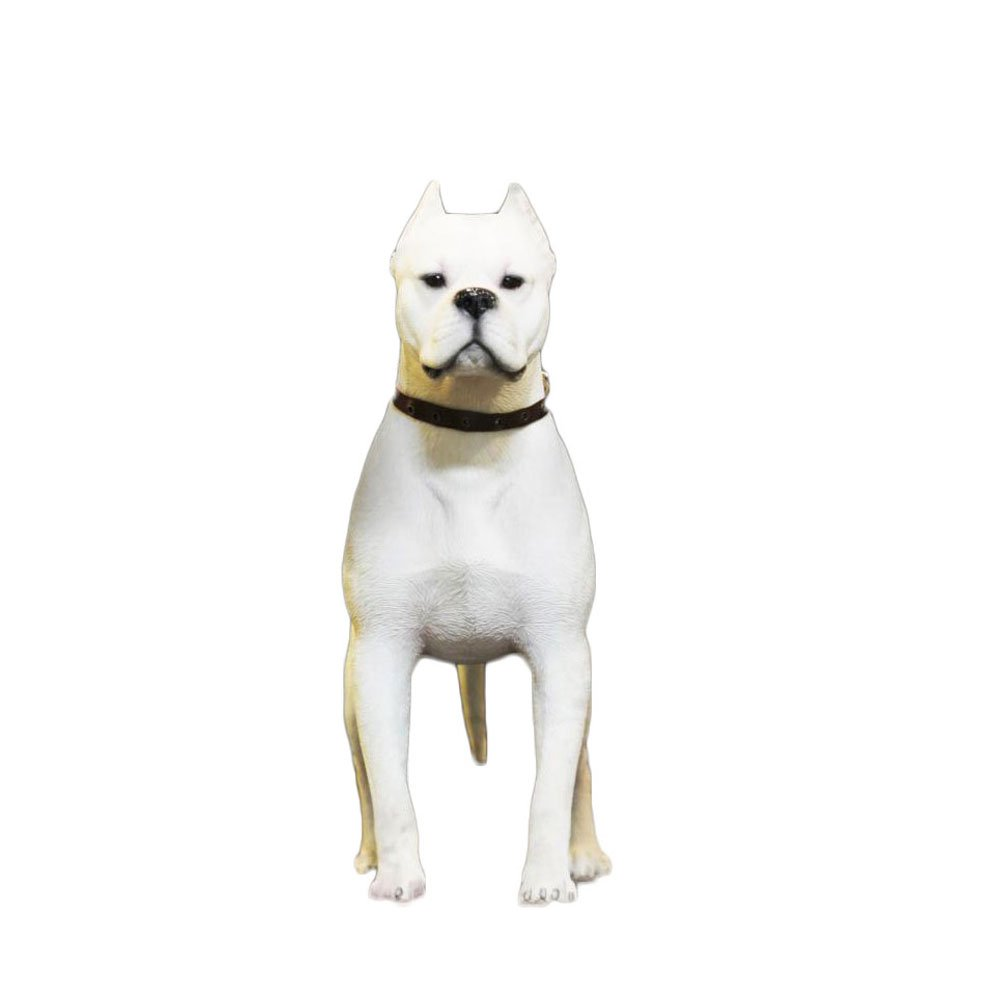 """PET SHOW Action Figure Accessories 1:6 Dogo Argentino Model for Office Home Car Dashboard Cars Vehicle Decorations Resin Cute Pet Doll 8.66"""" Pack of 1(White)"""
