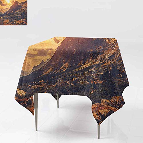 - DUCKIL Stain-Resistant Tablecloth Italian Alps Scenery Northern Italy Rocks Granite Wild Plants Scenic Picture Excellent Durability W54 xL54 Yellow Pale Brown