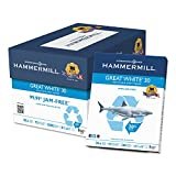Hammermill 86700 - Great White Recycled Copy Paper, 92 Brightness, 20lb, 8-1/2 x 11, 5000 Shts/Ctn