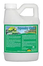 Simoniz G1423004 Green Scene Squeaky Clean Liquid Dish Detergent, 1 gal Bottles per Case (Pack of 4)