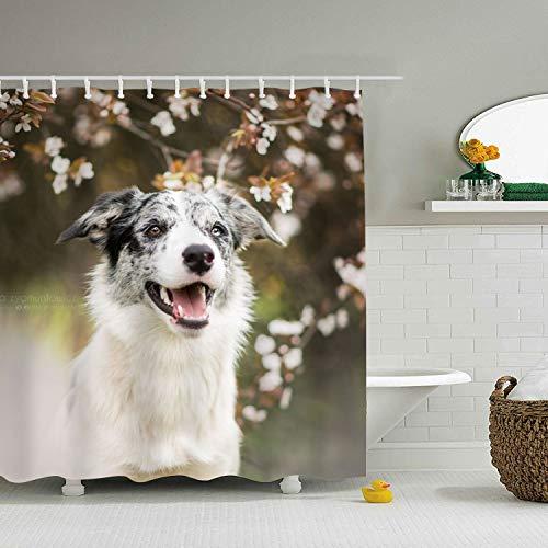 Bathroom Shower Curtains - Australian Shepherd -Mildew Resistant for Bathroom Showers and Bathtubs 71 × 78 -