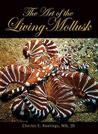 The Art of the Living Mollusk