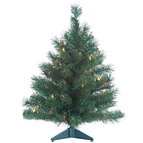 Gerson Colorado Spruce Lighted 2 Foot High Christmas Tree - Battery Operated with Timer - Artificial Tree with Multi Colored LED Lights - Indoor/Outdoor Seam Sealed Battery Compartment (Tree Colorado Christmas)