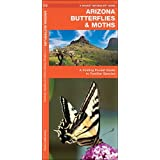 Arizona Butterflies & Moths: A Folding Pocket Guide to Familiar Species (A Pocket Naturalist Guide)