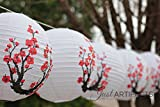 "Just Artifacts Red Sakura (Cherry) Flowers White Color Chinese/Japanese Paper Lantern/Lamp 16"" Diameter - Just Artifacts Brand"