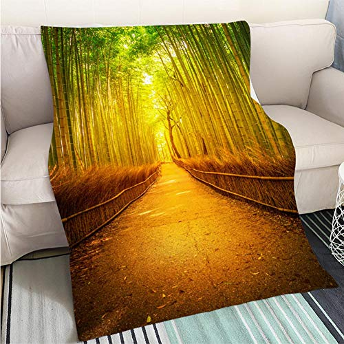 (BEICICI Custom homelife Abstract Home Decor Printing Blanket Arashiyama Bamboo Kyoto Sofa Bed or Bed 3D Printing Cool Quilt )