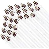 """(Case of 25) F32T8/SP865 DAYLIGHT Linear Fluorescent 32-Watt T8 FO32 6500K Light Bulbs 48"""""""
