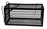 Harris Catch & Release Humane Animal and Rodent Cage Trap for Mice,...