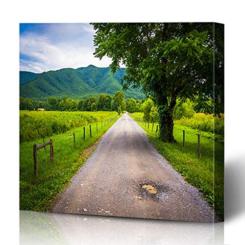 Ahawoso Canvas Prints Wall Art 12x12 Inches Smoky Tree Along Dirt Road Cades Cove Tennessee Farm Parks Country Scenic Agricultural Agriculture Design Decor for Living Room Office Bedroom