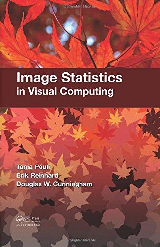 Image Statistics in Visual Computing (Computing Visual)