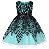 JaysisBaby Dress,Baby Girls Birthday Wedding Party Princess Dress Performance Formal Tutu Dress Clothes By Jaysis For 12M-6Y