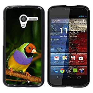 Caucho caso de Shell duro de la cubierta de accesorios de protección BY RAYDREAMMM - Motorola Moto X 1 1st GEN I XT1058 XT1053 XT1052 XT1056 XT1060 XT1055 - Bird Purple Green Jungle