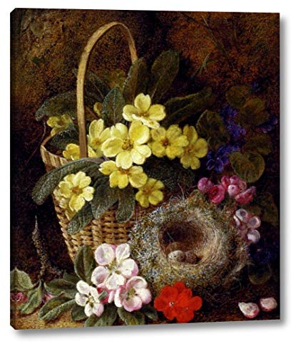 Still Life with Primroses, Violas, Cherry Blossom and Geraniums and a Thrushs Nest by George Clare - 19