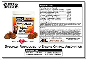 Hip and Joint Supplement for dogs + Skin and Coat, Glucosamine Chondroitin Chews + MSM for Large Dogs, Pet Glucosamine for Dogs with Chondroitin + MSM Chewable, Glucosamine Chondroitin for Dogs by AEL Legacies LLC