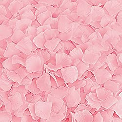 BESKIT 3000 Pieces Silk Rose Petals Artificial Flower Petals for Wedding Confetti Flower Girl Bridal Shower Hotel Home Party Valentine Day Flower Decoration (Pink)