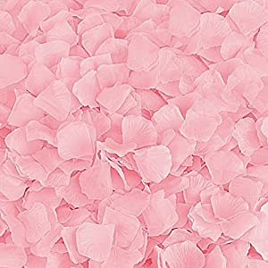 BESKIT 3000 Pieces Silk Rose Petals Artificial Flower Petals for Wedding Confetti Flower Girl Bridal Shower Hotel Home Party Valentine Day Flower Decoration 3