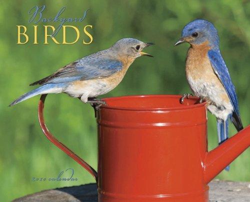 Backyard Birds 2010 Calendar ()