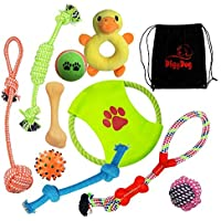 Dog Rope Toys 10 Pack Gift Set + Free Bonus Bag – Dog Toys Ropes with Knots Bones Balls Frisbee Chew Squeak Plush Duck Toy Best Gift for Your Dog