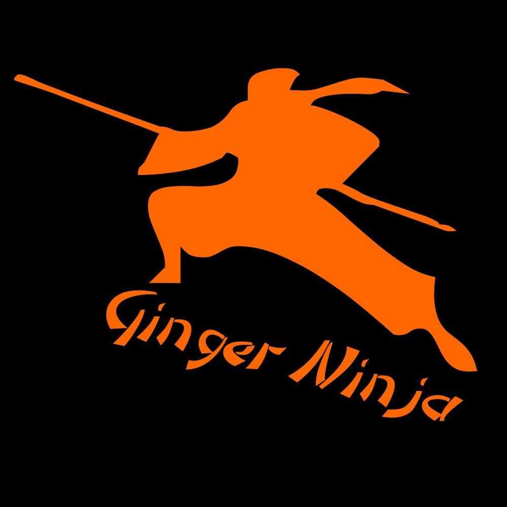 CG Ninja Ginger para conexión a dispositivos diseño de ...