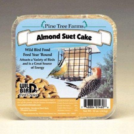 Almond Suet Cake - 2