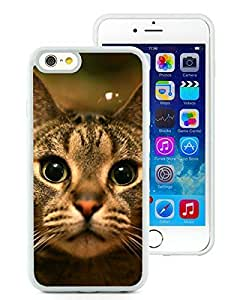 2014 Newest iPhone 6 Case,Christmas Cat White iPhone 6 4.7 Inch TPU Case 12