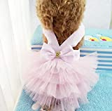 FidgetGear Pet Clothes Puppy Small Dog Cat Cotton Lace Tutu Skirt Apparel Princess Dress Pink Stripe XS