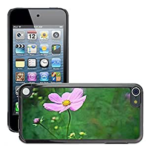 Print Motif Coque de protection Case Cover // M00294696 Cosmos Flores del otoño // Apple ipod Touch 5 5G 5th 6 6G 6th