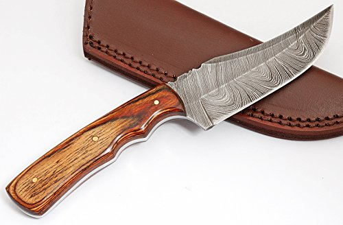 Anna Home Collection AN-9013 Custom Made Damascus Steel Hunting Knife Pukka Wood Handle with Real Leather Sheath. (Brown)