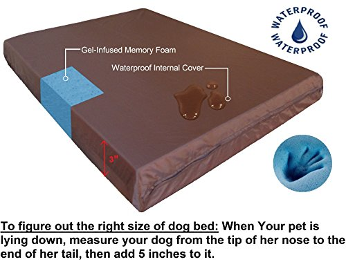 Dual-Function-Heavy-Duty-Metal-Elevated-Pet-Bed-with-Textilene-Fabric-And-Waterproof-Memory-Foam-Suede-Brown-Color-bed-for-Medium-to-Extra-Large-Dog-48X30X45