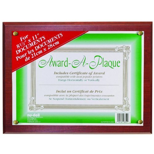 Award Plaque 13