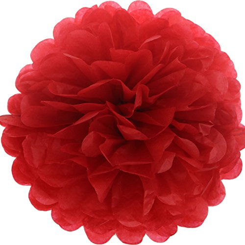 Red Tissue Balls - Lightingsky 10pcs DIY Decorative Tissue Paper Pom-poms Flowers Ball Perfect for Party Wedding Home Outdoor Decoration (10-inch Diameter, Red)