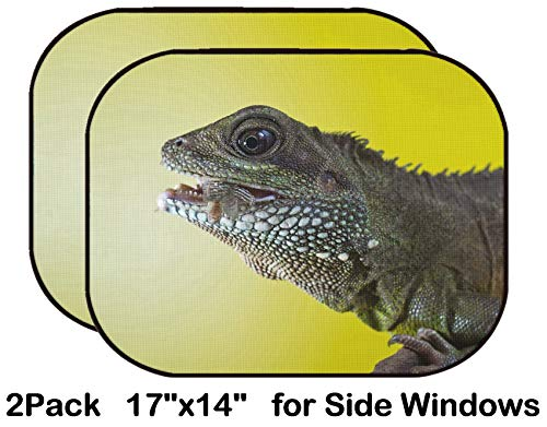 Liili Car Sun Shade for Side Rear Window Blocks UV Ray Sunlight Heat - Protect Baby and Pet - 2 Pack Close up Portrait of Beautiful Water Dragon Lizard Reptile Eating an Insect Photo