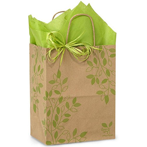Ivy Lane Paper Shopping Bags - Cub Size - 8 x 4 3/4 x 10 1/4in. - 100 Pack by NW