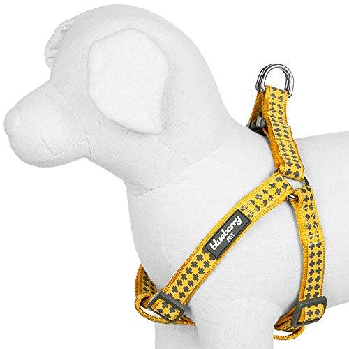 Blueberry Pet 3/4-Inch Gold Cross Print Basic Polyester Nylon Dog Collar, Medium