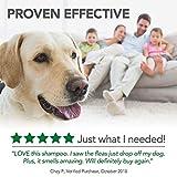 Vet's Best Flea and Tick Advanced Strength Dog