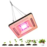 Full Spectrum LED Grow Light, IP67 Waterproof, Corrosion Protection, COB 50W Plant Grow lamps for Hydroponics, Greenhouse and Indoor Plants, Such as Tomato, Eggplant, Lettuce, Succulents (Gold)
