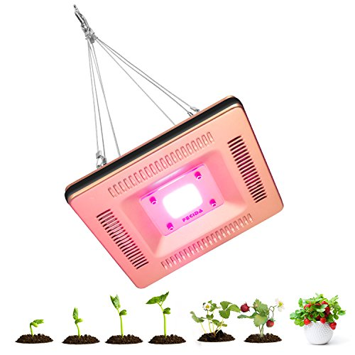 Research On Led Grow Lights in US - 8